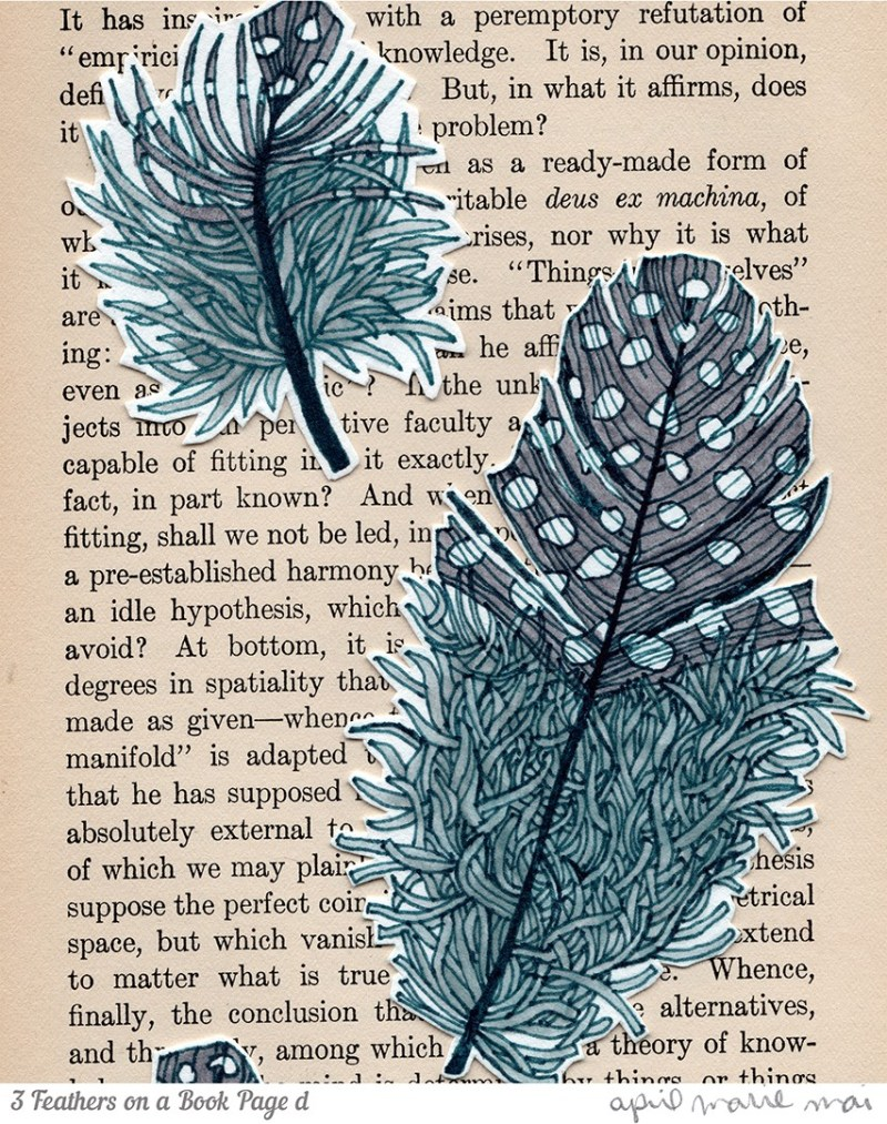 3 Feathers on a Book Page Detail Print