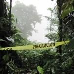Climate Change Threatens Amazon