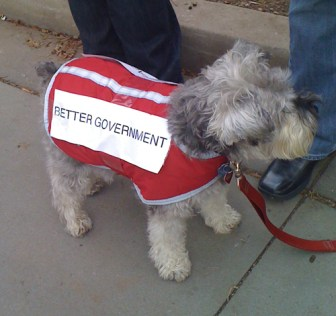 dog_protester