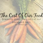 The Cost of Our Food