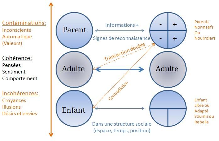 3 Etats de l'analyse transactionnelle