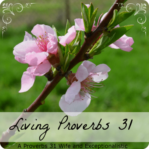 Living Proverbs 31