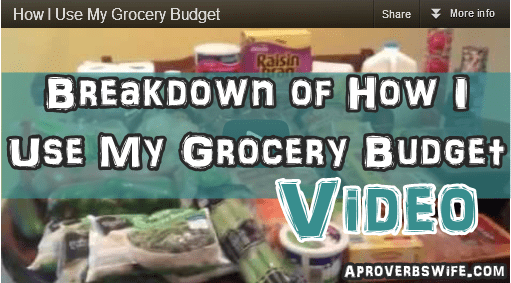 How I Use My $70 Grocery Budget  at Aldi
