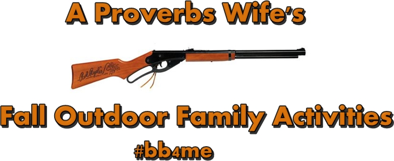 Daisy Red Ryder BB Gun | AProverbsWife.com | #bb4me