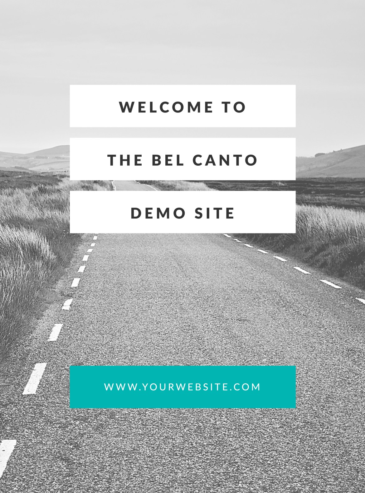 Welcome to the Bel Canto Demo