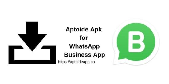 Aptoide Apk for WhatsApp Business App
