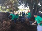 Spreading the Mulch
