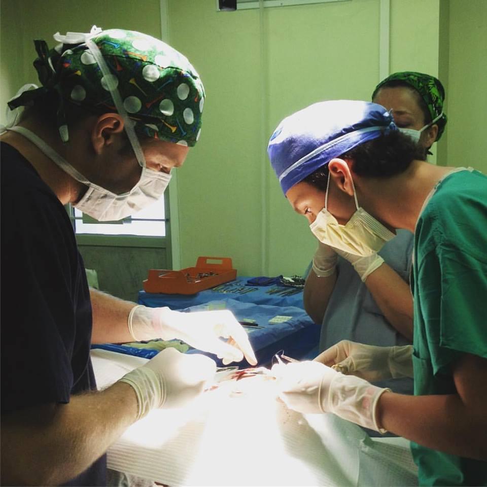 Dr Emmanuel Mallol Dominican Republic Death