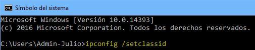 ipconfig_setclassid