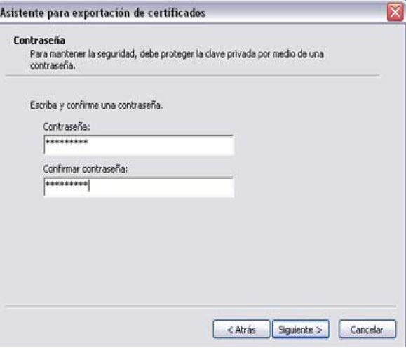 Firma digital exportar Importar_7