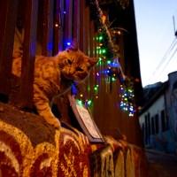 Fotografías de Valparaíso