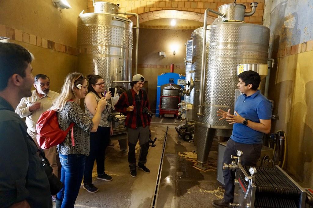 Conociendo el funcionamiento de una viña orgánica en Cavas del Valle