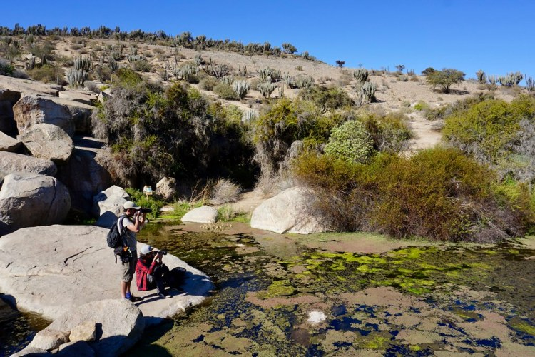 Fotografiando el Valle del Encanto
