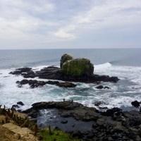 5 imperdibles de Pichilemu
