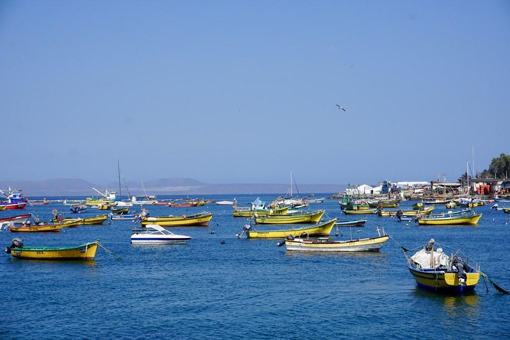 Bahía de Tongoy