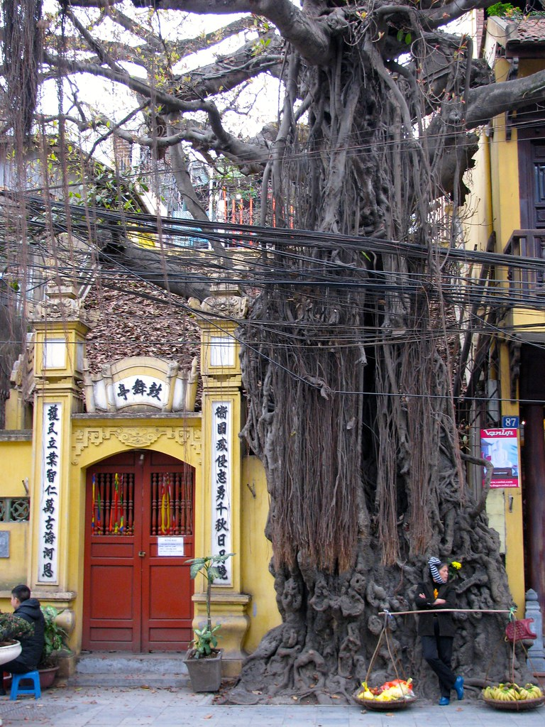 La vendedora de Hanoi