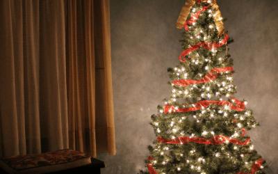 Simple 12 Week Holiday Savings Plan