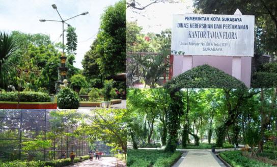 Serunya Berwisata Hemat ke Taman Flora Surabaya