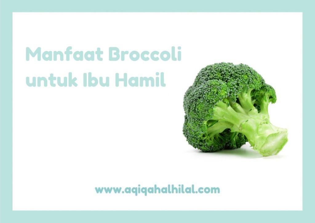 Manfaat Broccoli untuk Ibu Hamil
