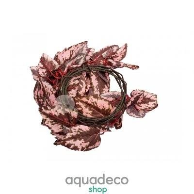 Купить Искусственное растение Repti-Zoo Begonia TP010 в Киеве с доставкой по Украине
