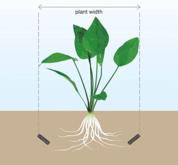 ADA Bottom Подкормка для аквариумных растений