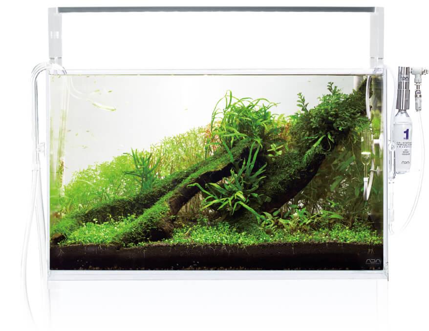 Следующтй шаг - первая стрижка аквариумных растений по инструкции ADA