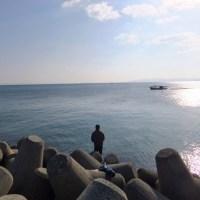 the scene in Awaji-island  : Kariya in Higashiura