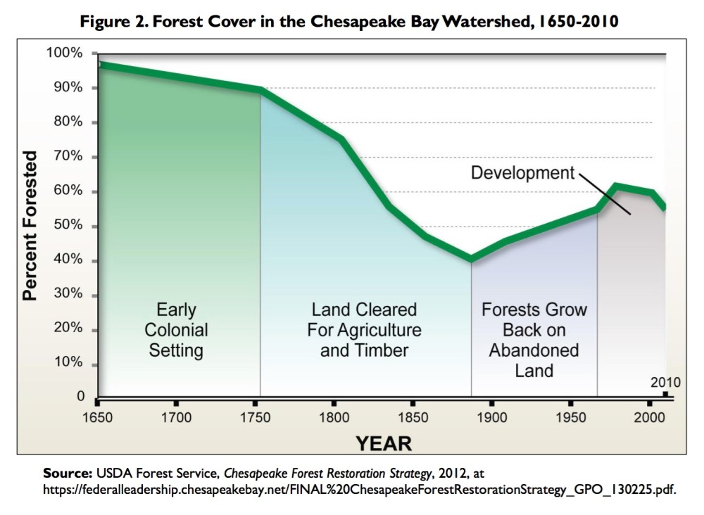 medium resolution of congress began to address ecosystem degradation in the chesapeake bay in 1965 when it authorized the first wide scale study of water resources of the bay