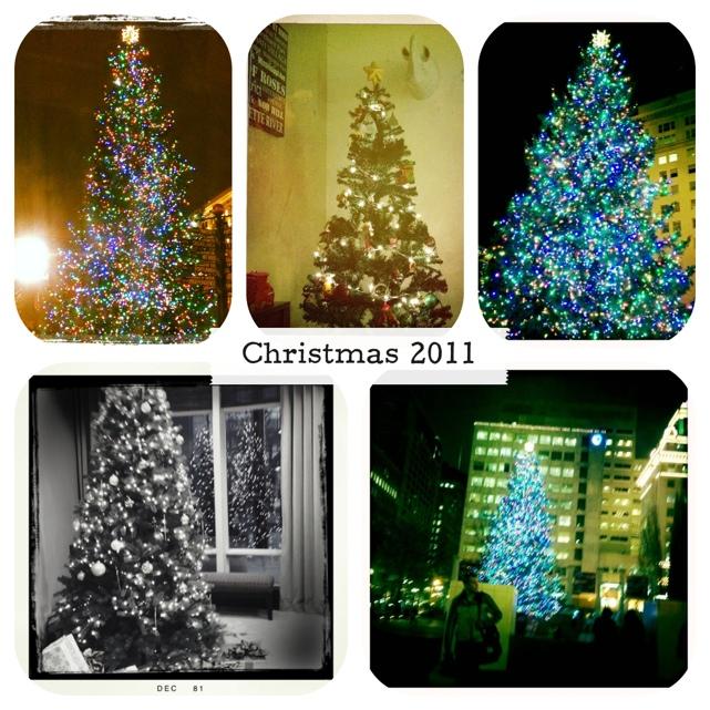 20111220-205424.jpg
