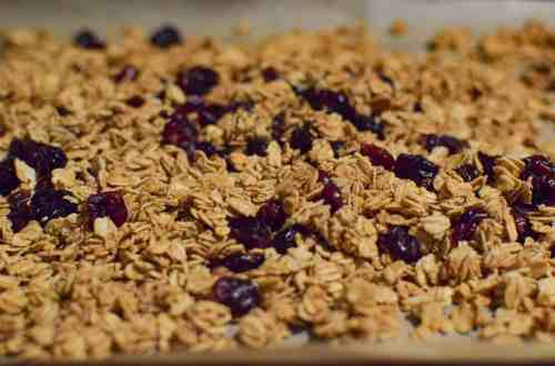 classic granola with cranberries close up