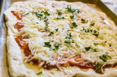 sourdough pizza dough