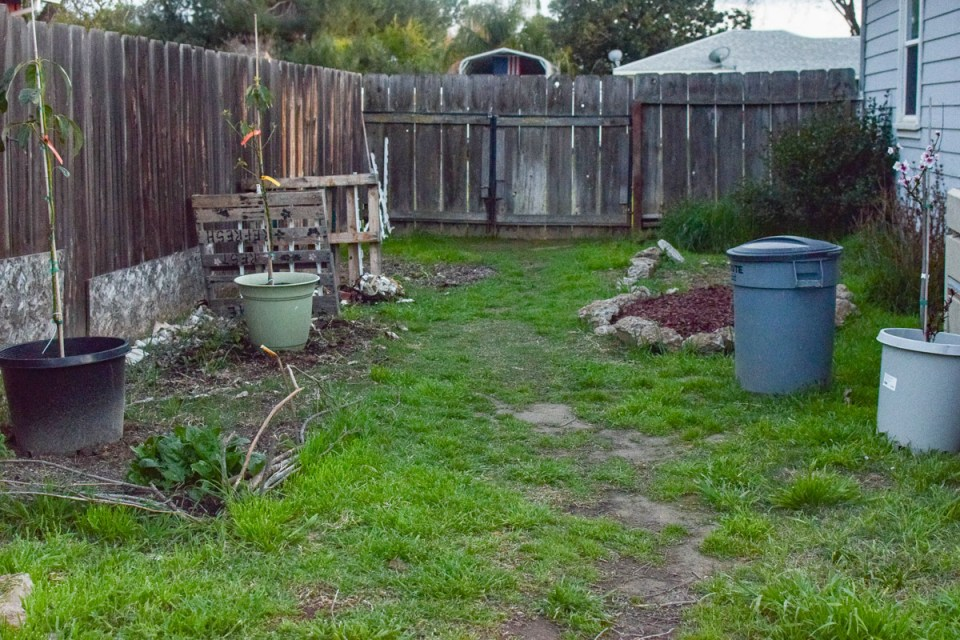 new garden area with beds and grass how to deal with garden fails
