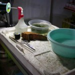 TyingMoss01 150x150 Cara Menanam Moss, Riccardia atau Fissiden