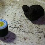 TyingMoss19 150x150 Cara Menanam Moss, Riccardia atau Fissiden