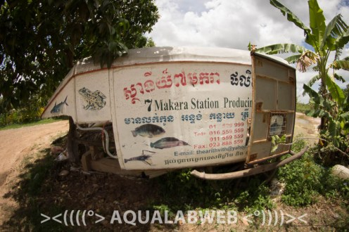 7 Makara fish farm near Phnom Penh, Cambodia