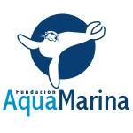 Aquamarina_grid