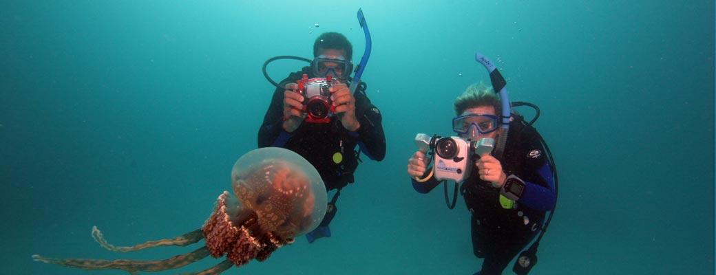 Unterwasser Video