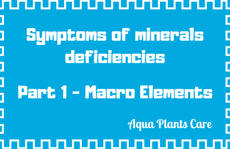 Symptoms of minerals deficiencies in planted aquarium – Part 1 Macro Elements