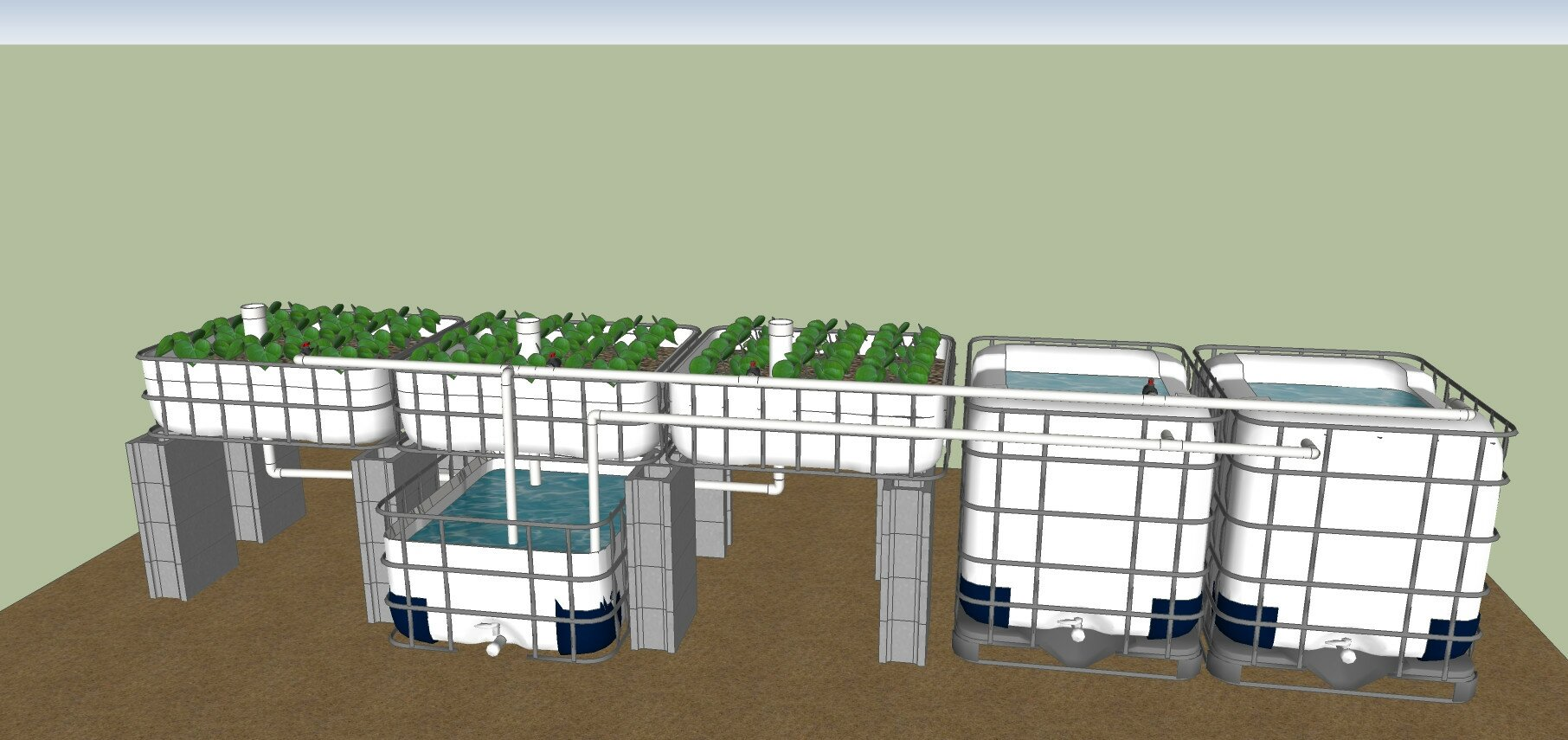 hight resolution of ibc aquaponics system plans