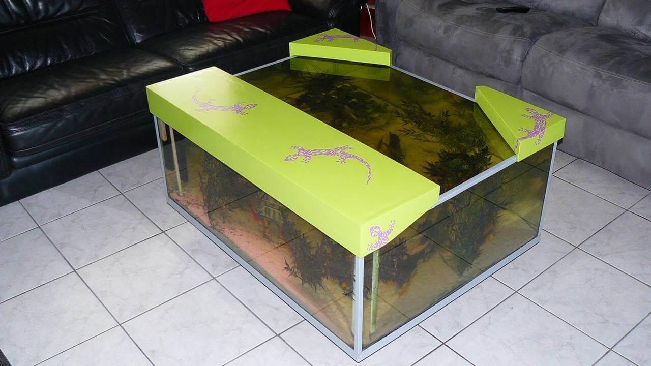 Decoration Aquarium Pour Combattant