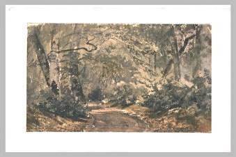 Huet Paul, La route des Ligueurs à Fontainebleau (RF 2049, Recto), aquarelle - crayon noir, s.d. © Musée du Louvre, Département des Arts graphiques
