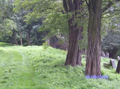 Das ist das einzige Foto, auf denen im Hintergund Grabsteine zu erkennen sind.