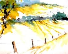 aquarell, sommer, landschaft, sommerlandschaft, niederfladnitz, retzerland