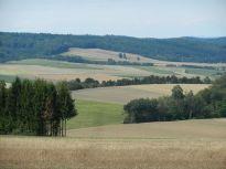 pleissing, retzerland, hardegg, niederösterreich, landschaft, landscape, felder, fields, wald, forest
