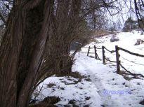 pleissing, winter, zaun, fence
