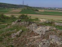 landschaft, landscape, koglsteine, weinviertel, waldviertel, rapsfelder