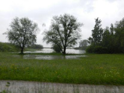 Salem, bodensee, überflutung, hochwasser, chiemsee