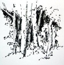 tusche, tuschpinsel, ink, indian ink, encre de Chine, lavis, pleissing, bäume, trees, arbres, wald, forest, bois,