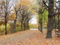 aquarell, watercolor, aquarelle, schloss, castel, palace, château, bäume, trees, arbres, allee, alley, parkway, allée, avenue, boulevard, park, parc, schönbrunn,