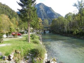 wald, forest, bois, bäume, trees, arbres, bach, beck, creek, ruisseau, ru, wildalpen, salza